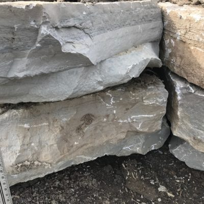 Outcropping Stone